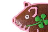 Lucky Pig — Stock Photo