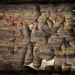 wooden background — Stock Photo #39860761