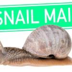 Постер, плакат: Snail Mail