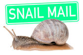 Snail Mail — Stock Photo
