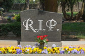 Cemetery — Stock fotografie