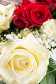 Bouquet of roses — Foto de Stock