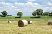 Bales of straw — Stock Photo