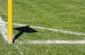 Football field — 图库照片