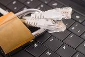 Delitos informáticos — Foto de Stock