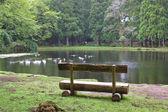 Watch the lake — Stock Photo