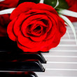 Red rose on piano — Stock Photo #26022989