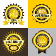 Satisfaction Guaranteed and Premium Quality Golden Labels — Vector de stock