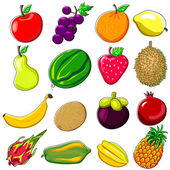 Fresh Fruits Doodle Style — Stock Vector