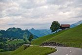 Erlenbach Im Simmental — Stock Photo