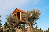 The tree house — Stock Photo