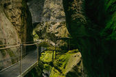 Gorges of the fou inArles-sur-Tech France — Stock Photo