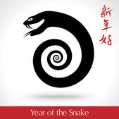 Year of the Snake 2013 — Stock Vector