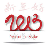 Year of the Snake 2013 applique background — Stock Vector