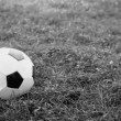 Soccer ball on the field - Stok fotoraf