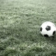 Soccer ball on the field — Stockvideo