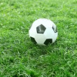 Soccer ball on the green field — Stockvideo