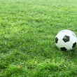 Soccer ball on the field — Stock Video #17144415