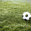 Soccer ball on the field — Video