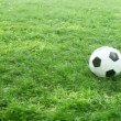 Soccer ball on the field — Stock Video #17145583