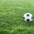 Soccer ball on the field — Stock Video