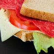Simply sandwichs — Stockfoto #15882605