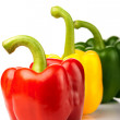 Red, yellow, green pepper — Stockfoto