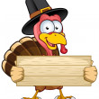 Thanksgiving Turkey Character — Imagen vectorial
