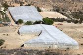 Plantaciones de efecto invernadero en la región de murcia, sur de españa — Foto de Stock