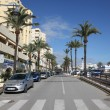 Stock Photo: Street with palm trees in Estepona, AndalusiSpain