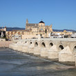The Roman Bridge with the Cathedral-Mosque of Cordoba in the background. Andalusia, Spain — Stock Photo