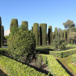 Gardens in the Alcazar of Christian Monarchs in Cordoba, Andalusia Spain — Foto Stock