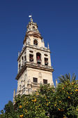 Bell tower of the Cathedral-Mosque in Cordoba, Andalusia, Spain — Stock Photo
