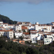 Stock Photo: White washed andalusivillage Gaucin, Spain