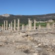 Roman ruin Baleo Claudia in Bolonia, Andalusia, southern Spain - Stock Photo
