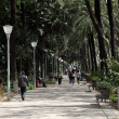 Strolling in the city park along the Paseo Parque in Malaga, Andalusia Spain — Stock Photo