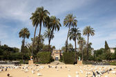 Maria Luisa Park in Seville, Andalusia Spain — Stock Photo