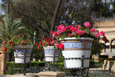 Flowerpots in Maria Luisa park in Seville, Spain — Stock Photo