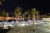 Palm Trees at the promenade of Malaga, Andalusia Spain — Stock Photo
