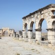Stock Photo: Arch of Caracallat Volubilis, Morocco, North Africa