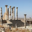 Stock Photo: Capitoline Temple in Volubilis, Morocco, North Africa