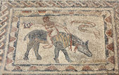Ancient Roman mosaic in Volubilis, Morocco, North Africa — Stock Photo