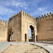 Stock Photo: Gate to medinin Fes, Morocco, North Africa