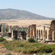 Stock Photo: Volubilis - Romruins in Morocco, North Africa