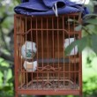 Singing bird in cage — Stock Video