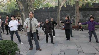тай чи в парке. шанхай, китай — Стоковое видео