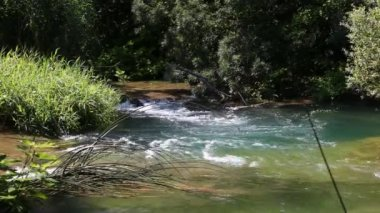 River in Krka National Park, Croatia — Stok video