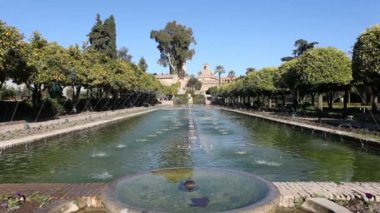 Gardens and fountains in Cordoba, Spain — Stock Video