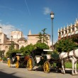 Horse driven cabs in Valencia, Spain — Stock Photo
