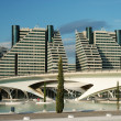 City of the Arts and the Sciences - Valence, Spain — Stock Photo